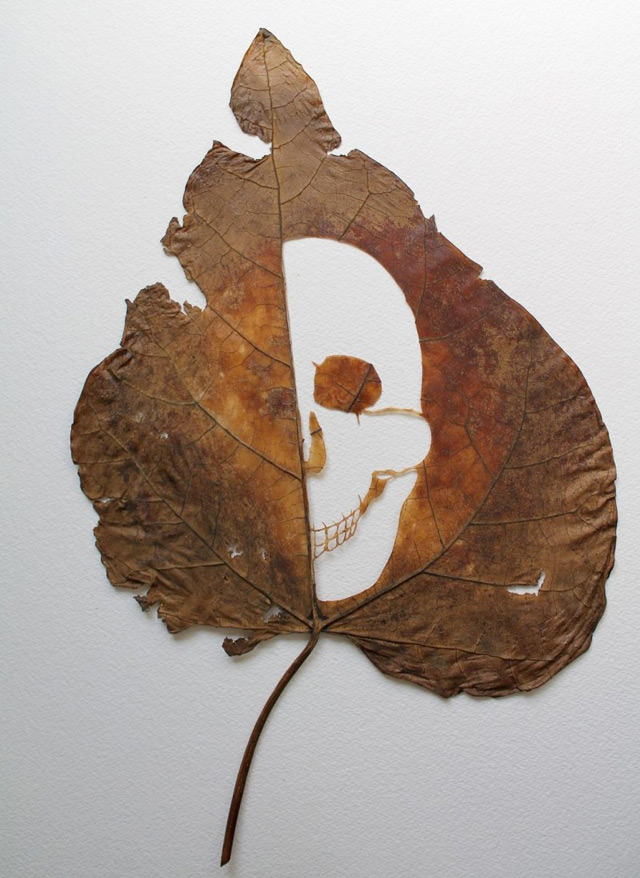 Skull cut out of a leaf