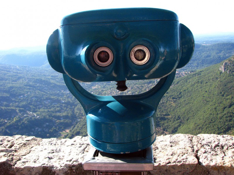 Tourist viewing binoculars that look like a muppet