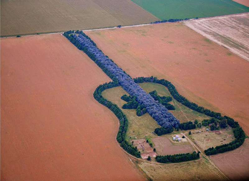 Ariel view of a large guitar shaped forest