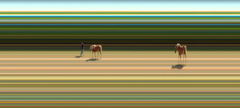 Surreal abstract photograph of horses