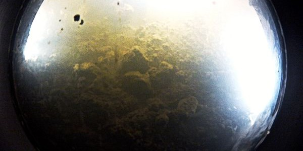Underwater camera touching the bottom of Whillans Lake in Antarctica