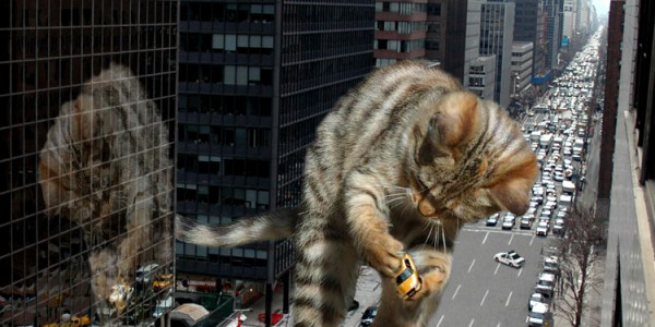 Realisitc cgi of a huge kitten destroying a city